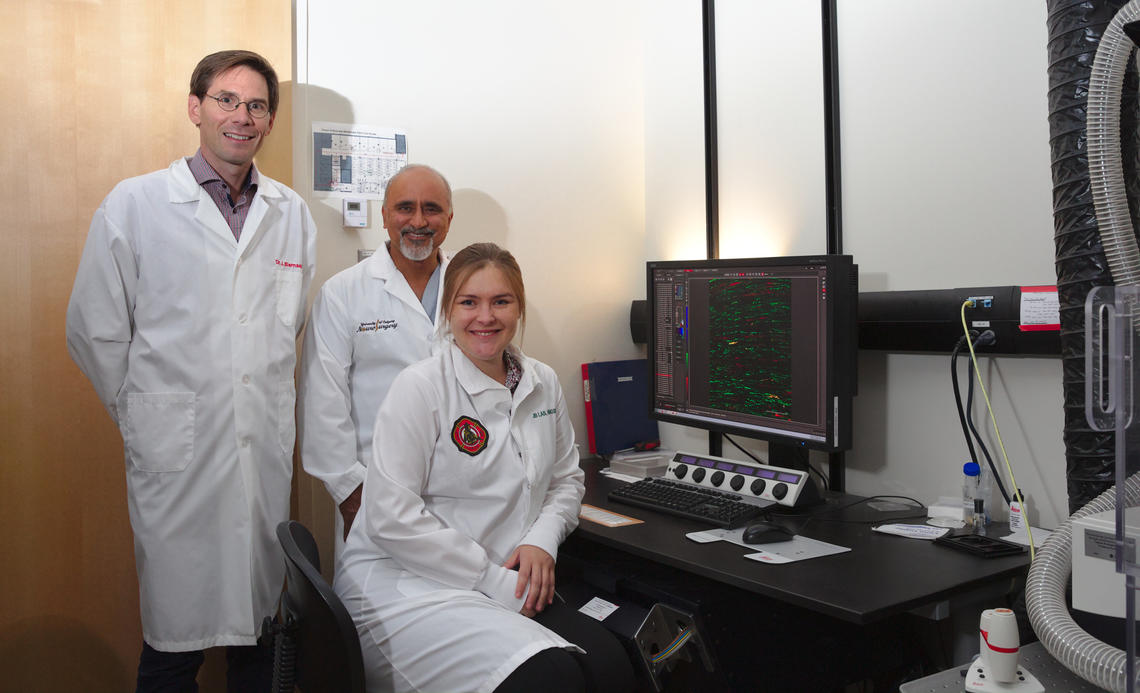 New research by Jeff Biernaskie, Rajiv Midha and Jo Anne Stratton could lead to more effective treatment for people who have suffered peripheral nerve damage.