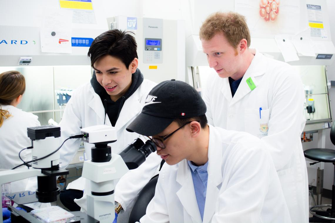 Dawson Yellowknee, left, and Daylin Deitz are  mentored by postdoctoral fellow Derek Toms in learning microtissue engineering.