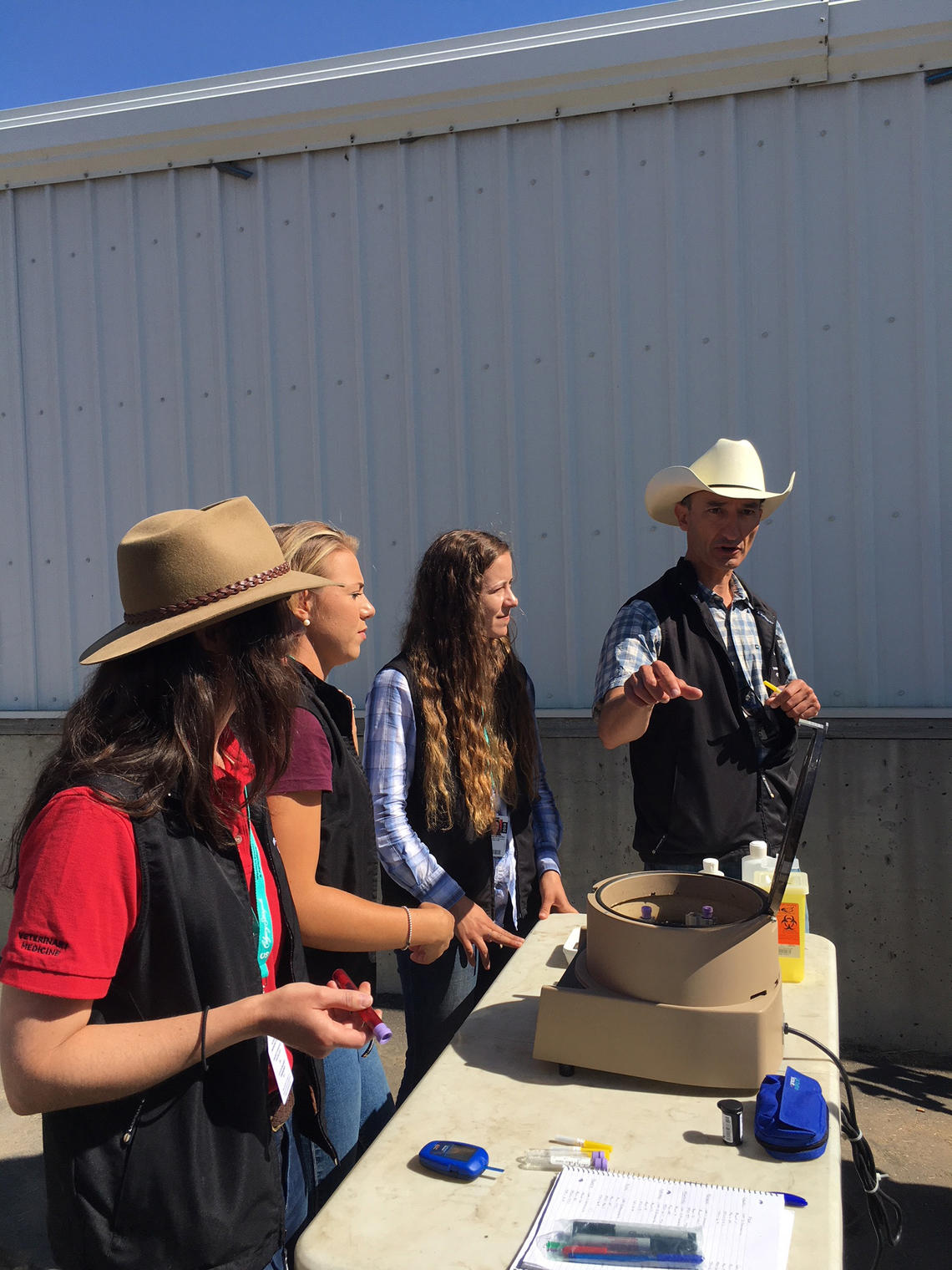 Renaud Léguillette and his team prepare a blood sample at the Calgary Stampede.
