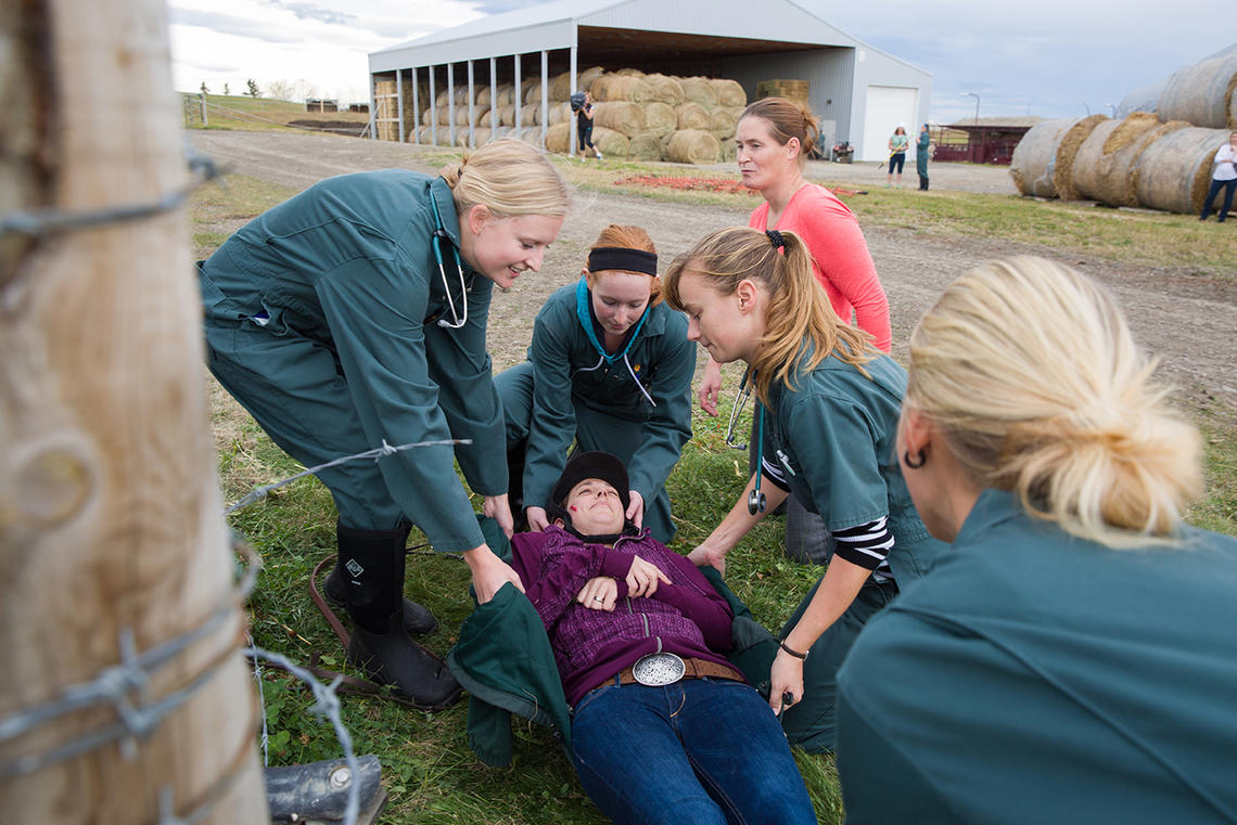 Students at the UCVM's Spyhill campus encounter a mock emergency situation and learn how to work as a team to manage the scene, make a plan, and use good communication skills.