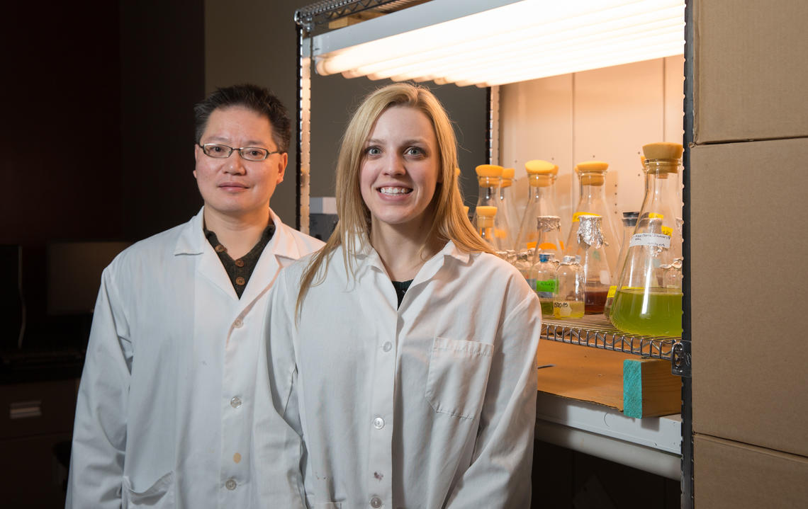 Gordon Chua recently co-authored a paper about using algae to detoxify tailings ponds in the Alberta oil sands. Lab Technician Lindsay Clothier was a key member of the research team.