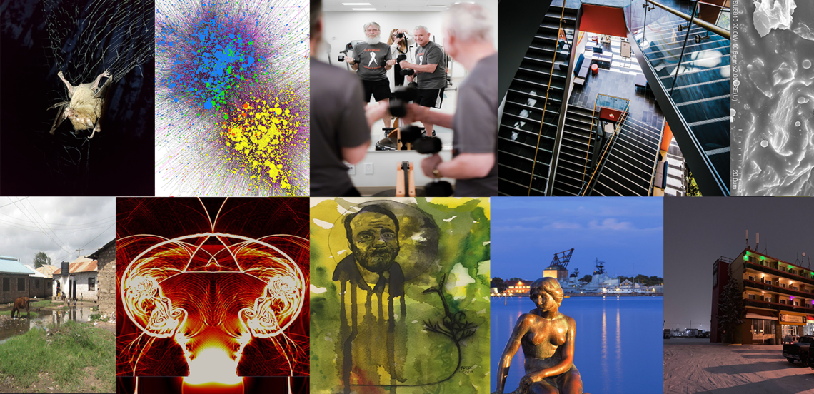 2020 FGS/GSA Research Image Competition previous entries