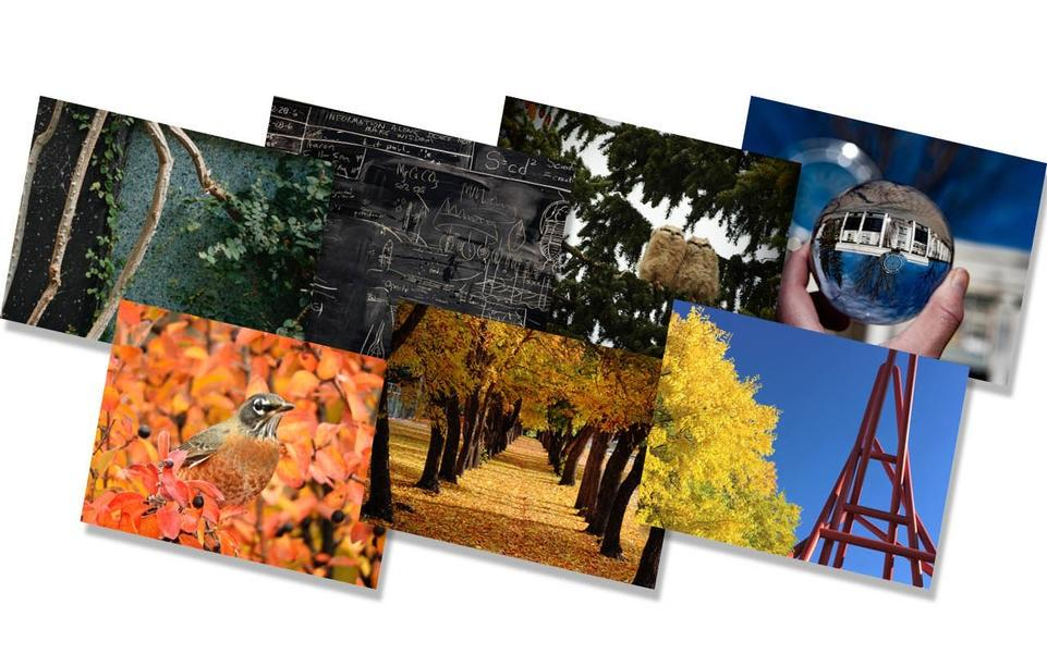 UCalgary offers a wide variety eNotes and print cards.