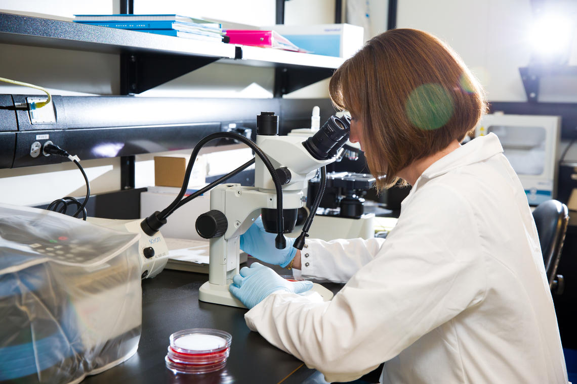 Many COVID-19 research projects are underway at the University of Calgary, racing to battle the pandemic.