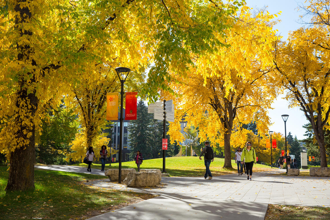 Fall on campus