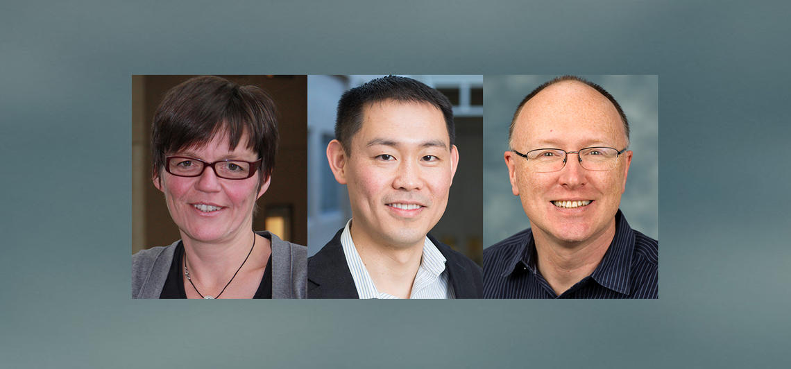 The CIHR Project Grant program chose projects led by Drs. Sabine Gilch, PhD, Tuan Trang, PhD, and Patrick Whelan, PhD, all researchers in the University of Calgary Faculty of Veterinary Medicine (UCVM).