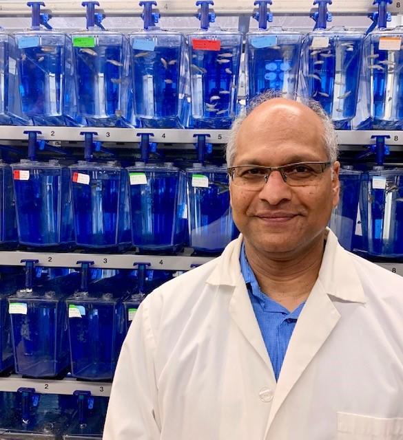 Dr. Matt Vijayan