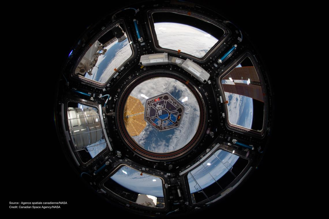 Photo of the mission patch for the TBone project. Photo was taken by Canadian Space Agency astronaut David Saint-Jacques during his mission aboard the International Space Station.
