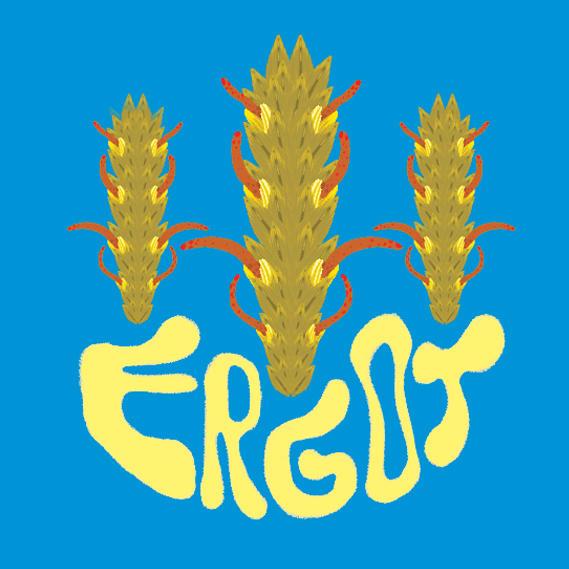 Ergot
