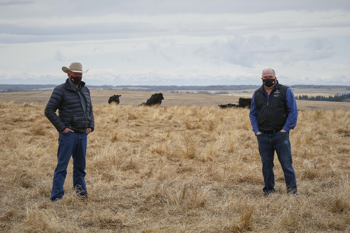 Bob Lowe, president of the Canadian Cattlemen's Foundation, and Dr. Ed Pajor, director of W.A. Ranches at the 'ranch of opportunities'.