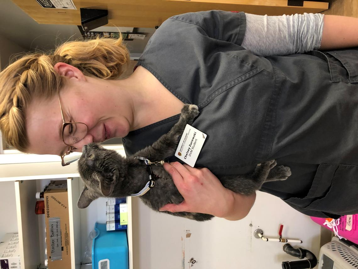 Chelsey Zurowski learned first-hand during vet school that committing to self-care is vital for mental and physical wellbeing. And cuddling kittens can't hurt.