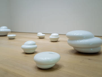 Installation view of Katie Ohe's exhibition at Esker Foundation, 2020.