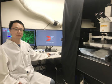 Dr. Jinjing Yao, PhD, was instrumental in solving the mystery behind this fatal heart flaw.