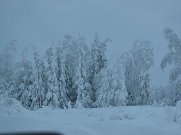 The Sahtu region in all its snowy beauty.