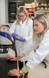 Dr. Raylene Reimer, professor and associate dean of research in the Faculty of Kinesiology at the University of Calgary, works in her lab alongside PhD student Teja Klancic. Photo by Adrian Shellard for the Faculty of Kinesiology