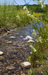 How UCalgary experts help keep Canada's water safe and sustainable