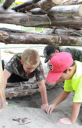 Campers collaborate to build structures from a variety of natural materials. Photo by Danielle Chicoine, Faculty of Kinesiology