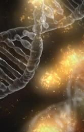 UCalgary Nursing professor contributes to landmark DNA study