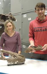 Dr. Darla Zelenitsky, PhD, and Jared Voris, PhD student are pictured with tyrannosaurid fossils at the Royal Tyrrell Museum.
