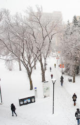 Winter on campus