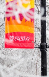 UCalgary encourages department purchasers to plan for possible supply shortage issues from China