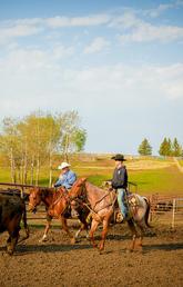W.A. Ranch