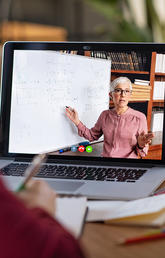 Strategies for teaching in the virtual classroom and facilitating virtual meetings