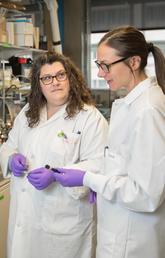 Three women in lab coats, wearing purple gloves.