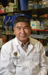 UCalgary study finds a common vitamin may help our immune system battle a deadly brain tumour