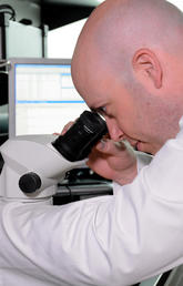 Dr. Robert Rose, PhD, works in his lab