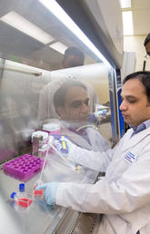 Dr. Dylan Pillai, study lead, and first author Dr. Abu Naser Mohon in the lab at the Snyder Institute, University of Calgary.