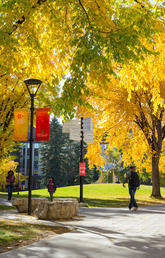 UCalgary develops vibrant postdoctoral community through flexible funding sources