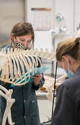 Expanded UCalgary vet med class kicks off Day One with hands-on learning