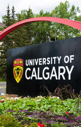 UCalgary is committed to ensuring a harassment-free work environment