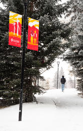 University of Calgary sees record enrolment, topping 35,000 students for first time