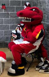 Rex awaiting Christmas