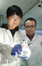 Schulich researchers look to turn straw into energy