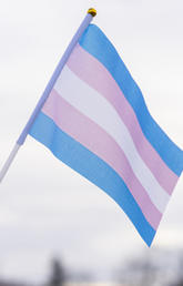 International Transgender Day of Visibility celebrates transgender and non-binary people around the world