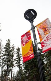 UCalgary embarks on international benchmarking study of administrative and support services
