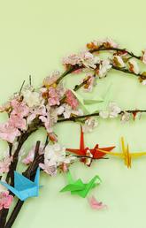 Blossoms and paper cranes