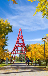 UCalgary campus in the fall