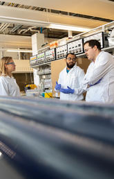 UCalgary researchers work on a revolutionary new process to extract phycocyanin.