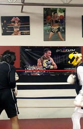 New technology helps protect fighter brain health