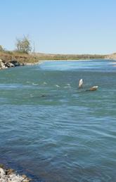 Peigan River