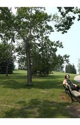 Opinion: You know what's really cool? Building more parks in Calgary