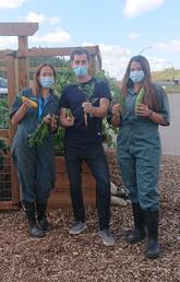 SU Sustainability Grant brings community garden to UCalgary Spyhill campus