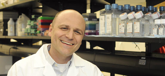 UCalgary researchers unlock new insights that could help with vaccine development