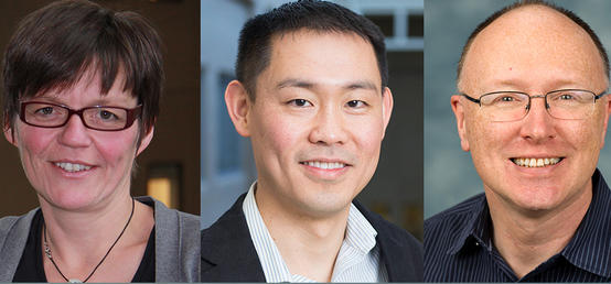 Trio of vet med researchers secures $2.6 million in national funding competition