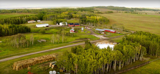 W.A. Ranches lays out long-range plan