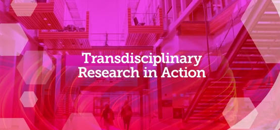 Achieving better outcomes through transdisciplinary scholarship